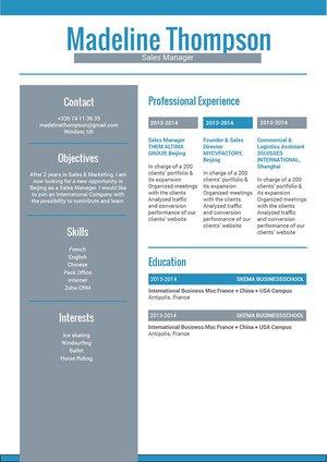 Mycvfactory-resume templates-181-ENG