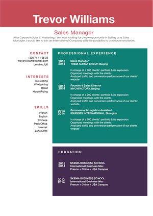 Mycvfactory-modern resume-191-ENG