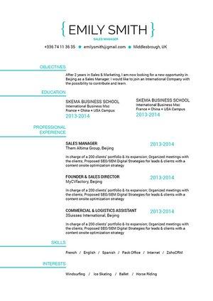 Mycvfactory-resume templates-217-ENG