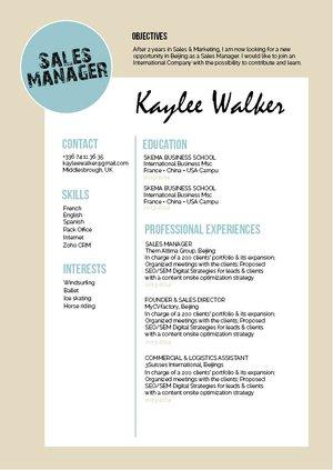 Mycvfactory-original resume-233-ENG