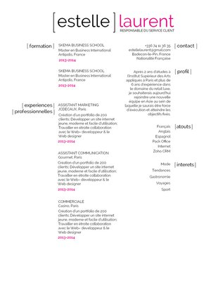 Mycvfactory-cv moderne-261