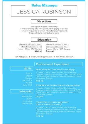 Mycvfactory-resume templates-316-ENG