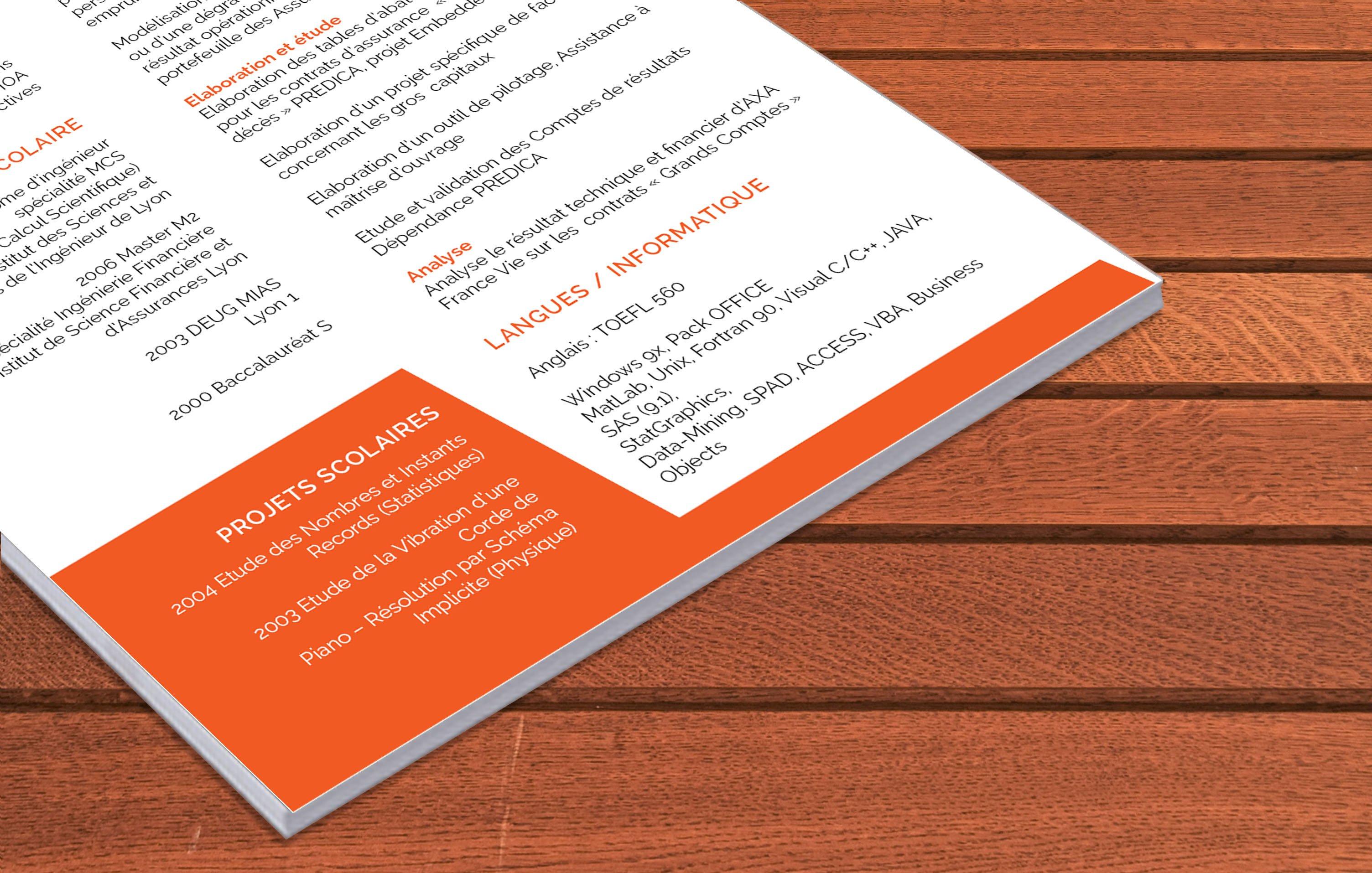 363 CV par competences by Mycvfactory 2.jpg