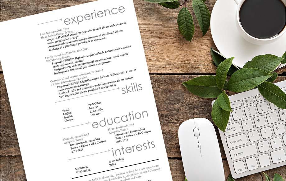 Mycvfactory-original resume-146-ENG