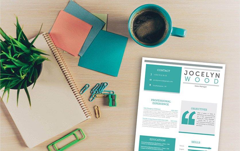 Mycvfactory-original resume-26-ENG