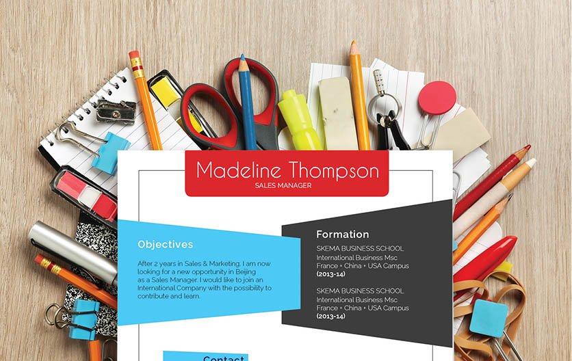 Mycvfactory-resume templates-323-ENG