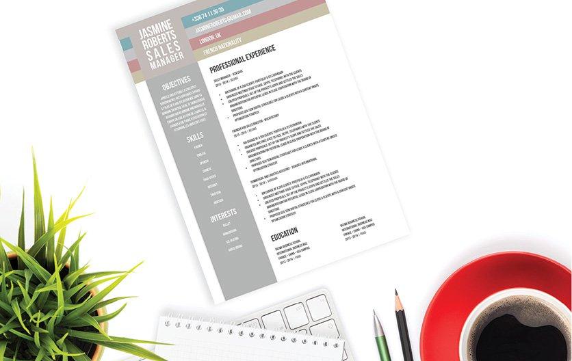 Mycvfactory-modern resume-107-ENG