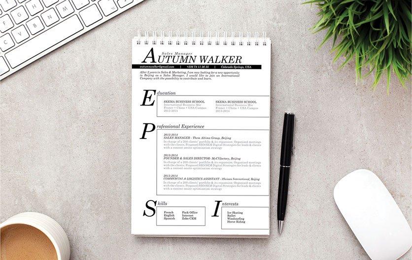 Mycvfactory-resume templates-230-ENG