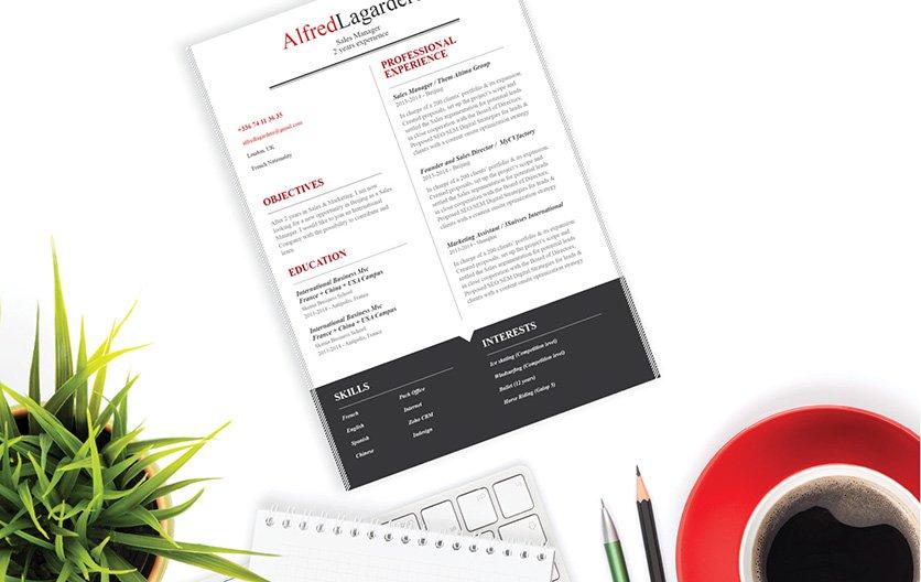 Mycvfactory-resume templates-61-ENG