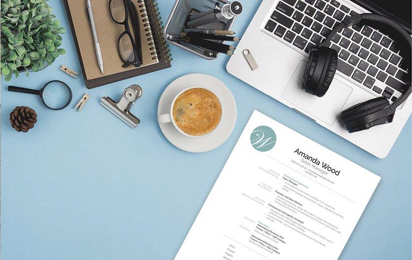 Mycvfactory-resume templates-130-ENG
