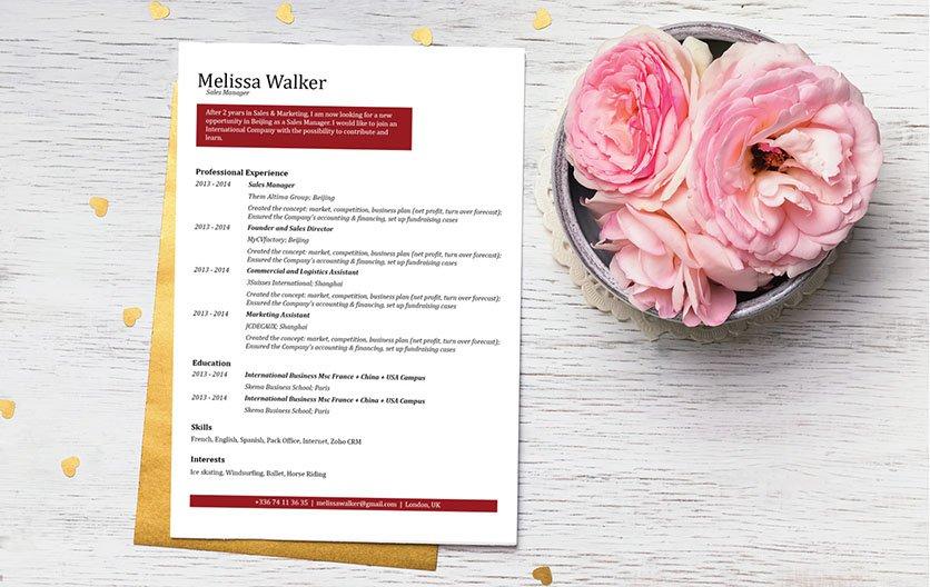 Mycvfactory-resume templates-133-ENG