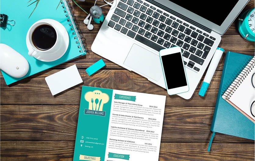 Mycvfactory-original resume-17-ENG