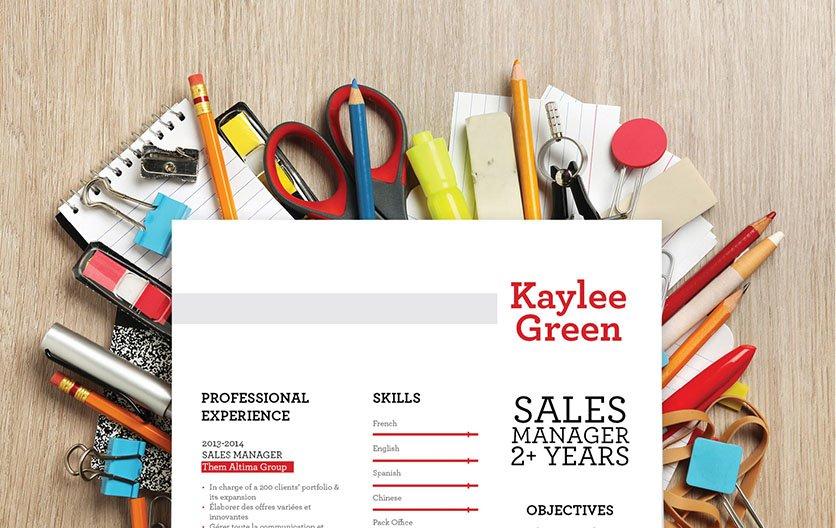 Mycvfactory-resume templates-119-ENG