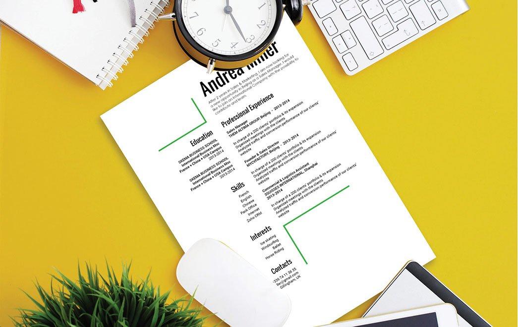 Mycvfactory-modern resume-176-ENG