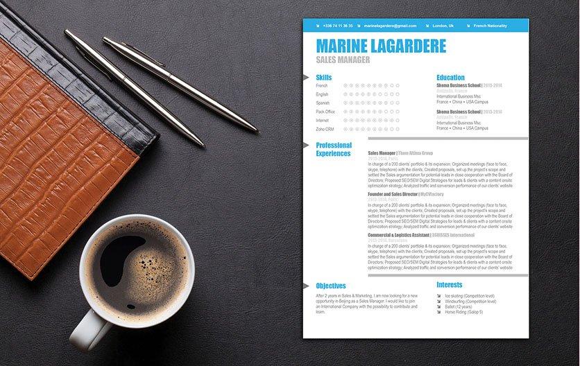 Mycvfactory-resume templates-40-ENG