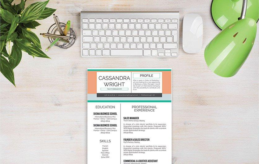 Mycvfactory-original resume-221-ENG