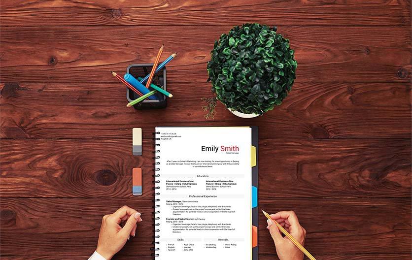 Mycvfactory-resume templates-141-ENG