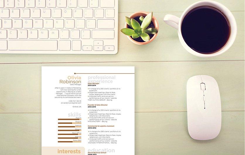 Mycvfactory-original resume-32-ENG