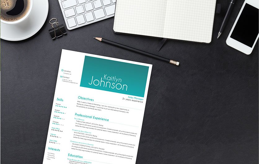 Mycvfactory-resume templates-08-ENG
