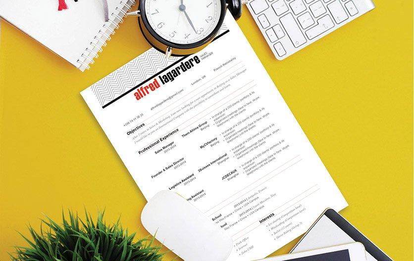 Mycvfactory-resume templates-42-ENG