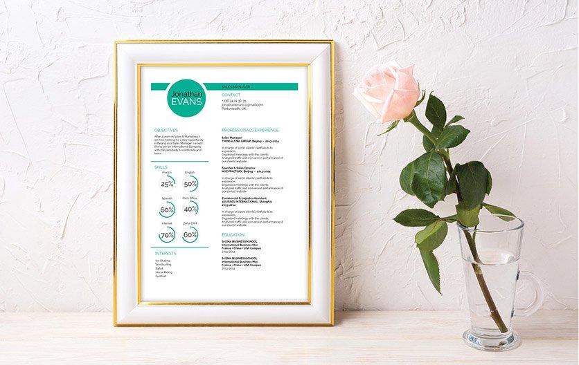 Mycvfactory-modern resume-208-ENG