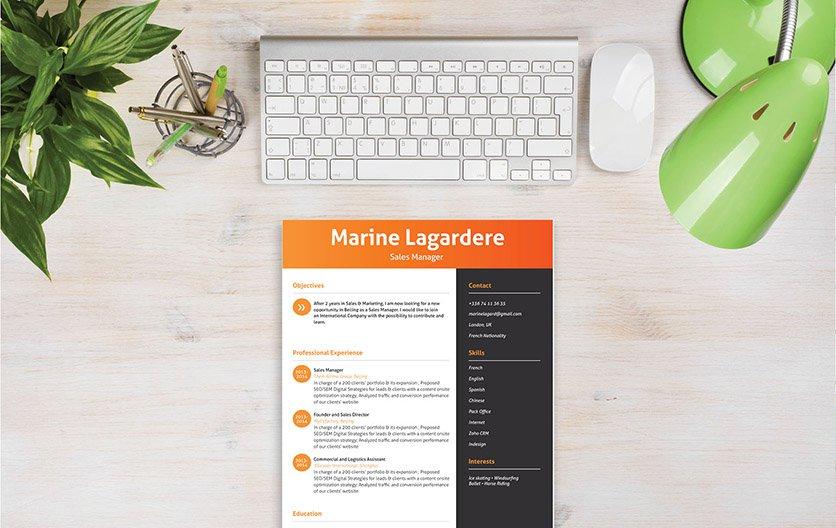 Mycvfactory-modern resume-80-ENG