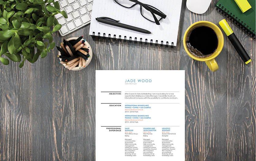 Mycvfactory-resume templates-139-ENG
