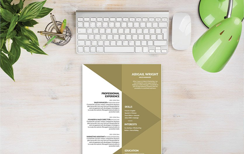 Mycvfactory-original resume-102-ENG