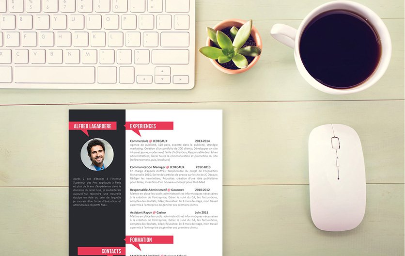 Mycvfactory-original resume-16-ENG