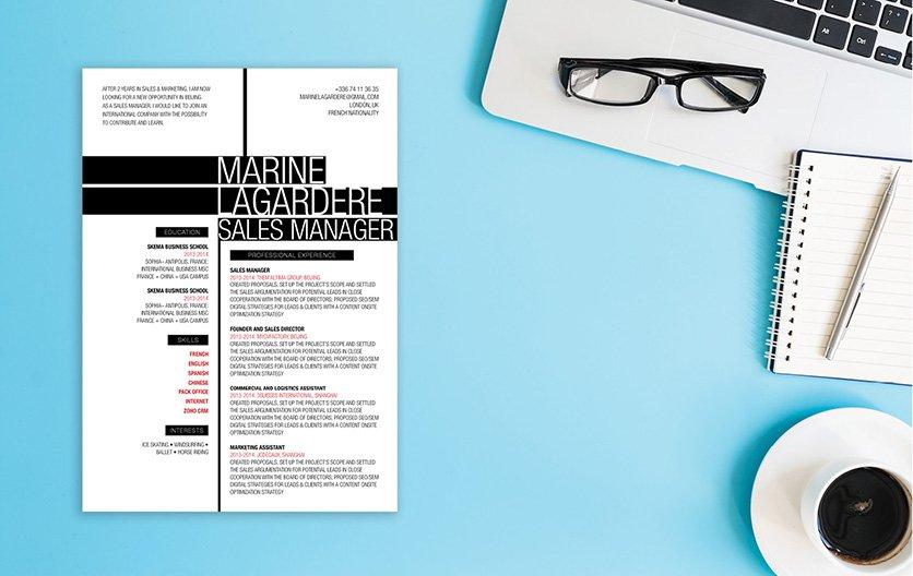 Mycvfactory-original resume-86-ENG