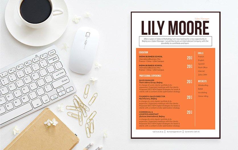 Mycvfactory-original resume-276-ENG