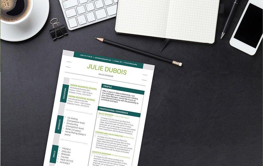 Mycvfactory-modern resume-96-ENG