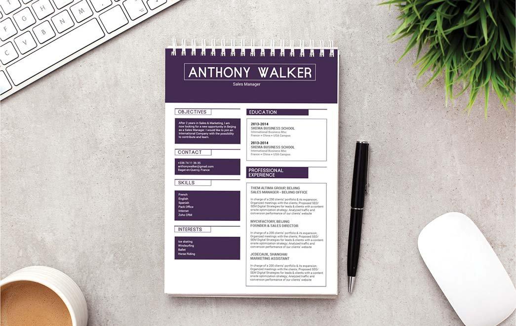Mycvfactory-modern resume-193-ENG