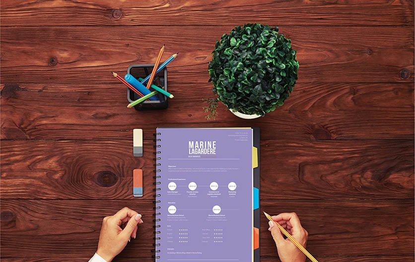 Mycvfactory-original resume-77-ENG