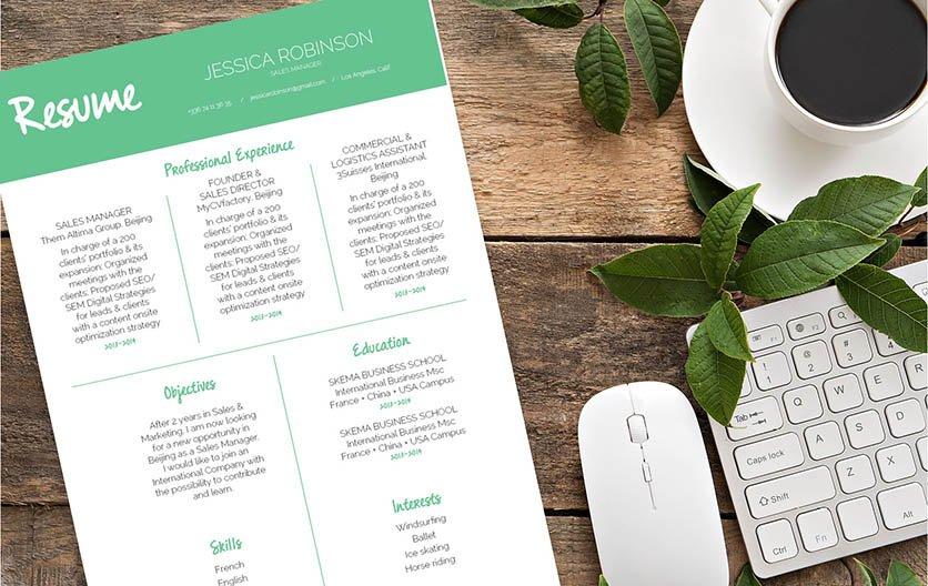 Mycvfactory-modern resume-296-ENG