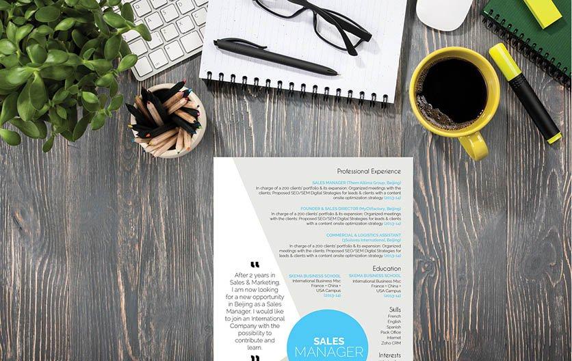 Mycvfactory-original resume-310-ENG