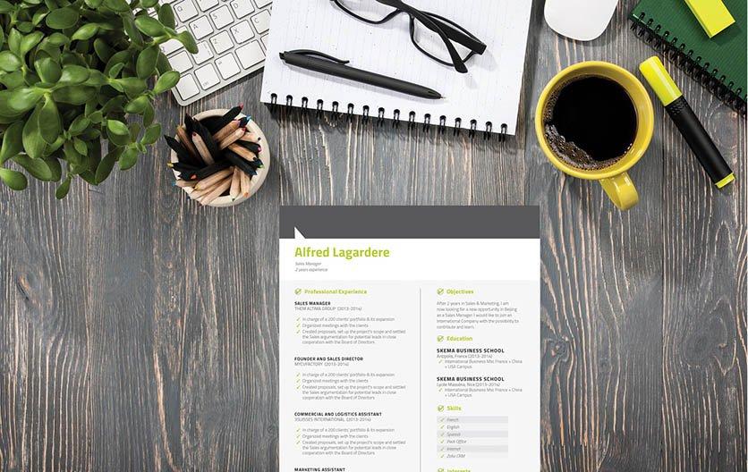 Mycvfactory-modern resume-49-ENG