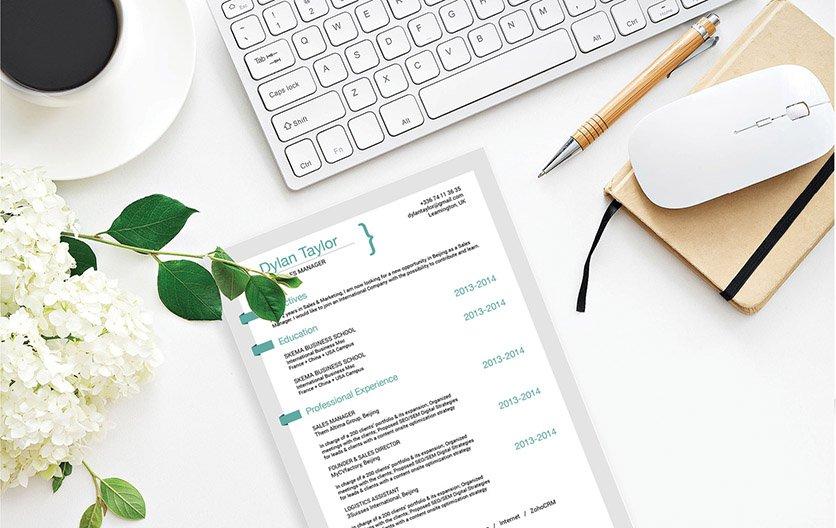 Mycvfactory-resume templates-210-ENG
