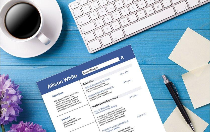 Mycvfactory-resume templates-211-ENG