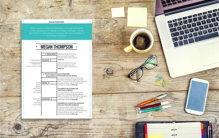 Mycvfactory-resume templates-325-ENG