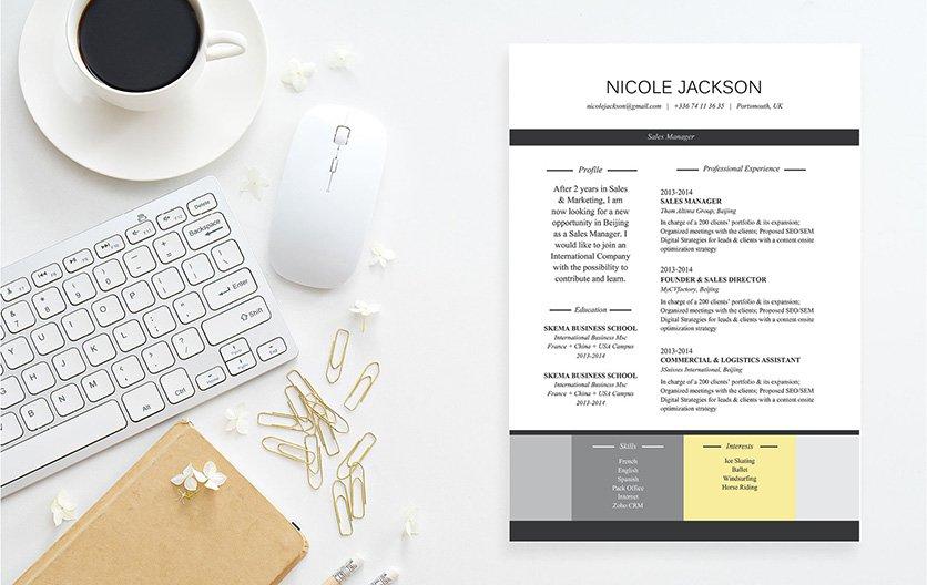 Mycvfactory-original resume-222-ENG