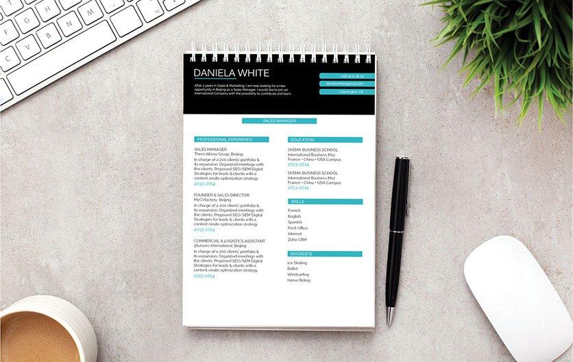 Mycvfactory-resume templates-220-ENG