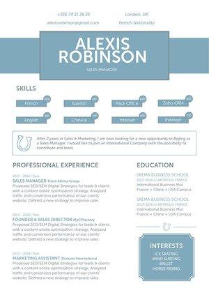 Mycvfactory-modern resume-101-ENG