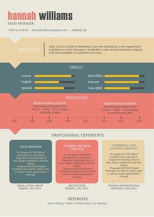 Mycvfactory-original resume-10-ENG