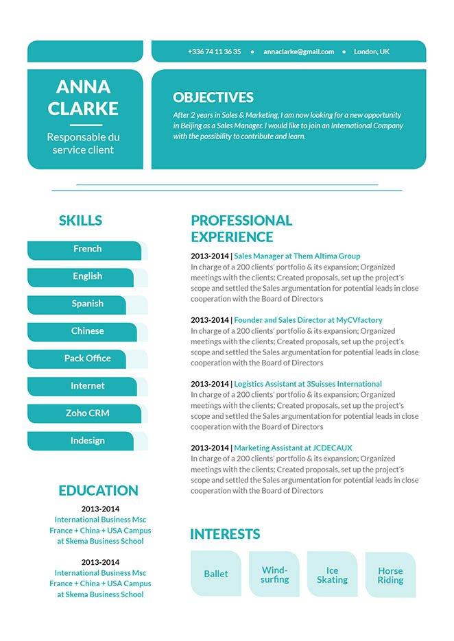 Mycvfactory-original resume-110-ENG