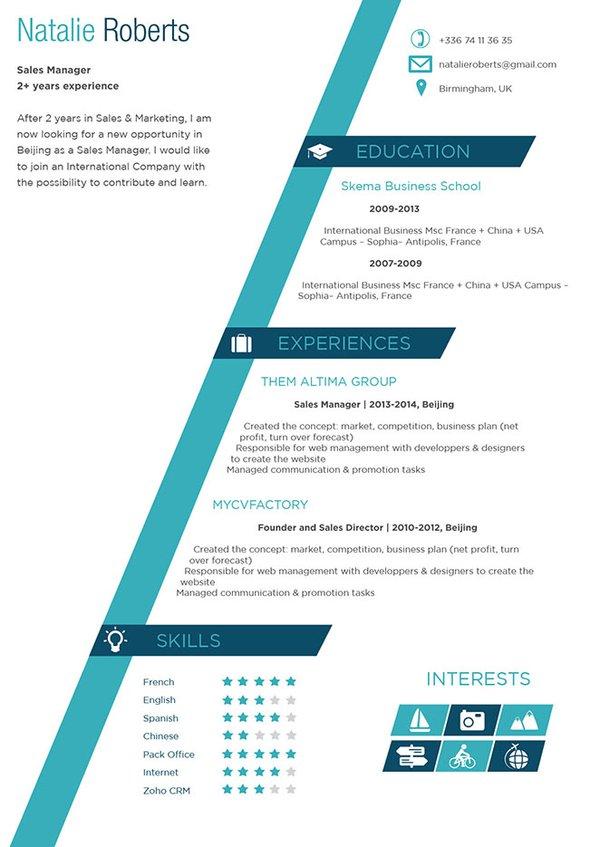 Mycvfactory-original resume-11-ENG