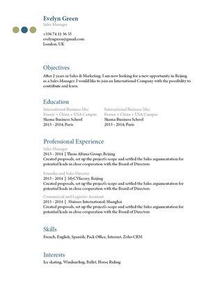 Mycvfactory-resume templates-136-ENG