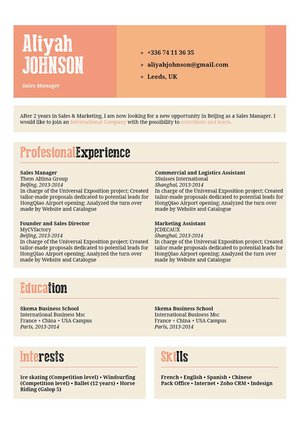Mycvfactory-original resume-161-ENG