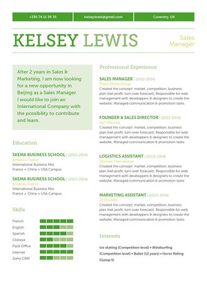Mycvfactory-original resume-162-ENG