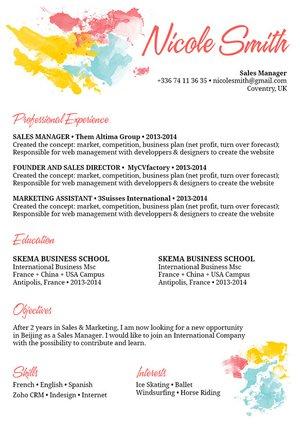 Mycvfactory-original resume-166-ENG